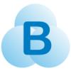 Braina Software