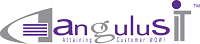 AngulusIT Software